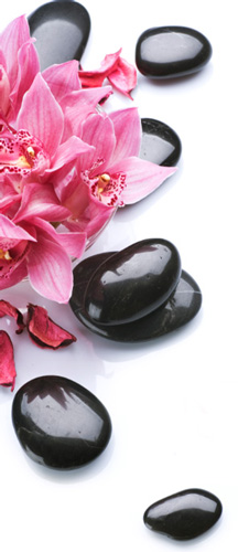 spa flower and stones